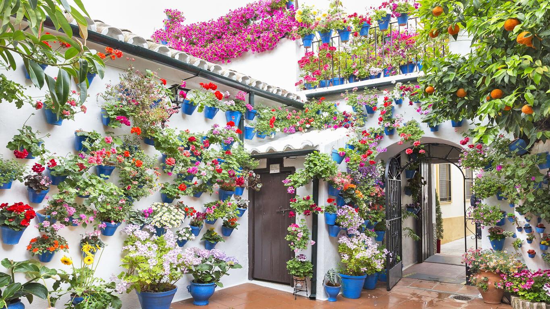 Centros Comerciales abiertos hoy en Córdoba